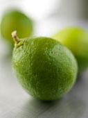 citronsverts.jpg